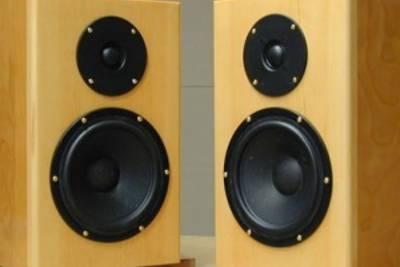 Акустическая система своими руками: выбор динамиков, акустического оформления, изготовление