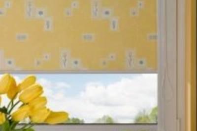 Где купить тканевые ролеты в Киеве