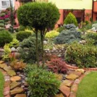 Озеленение и благоустройство загородного участка