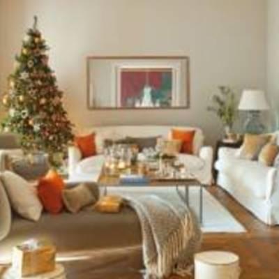 Как правильно выбрать елку живую и искусственную