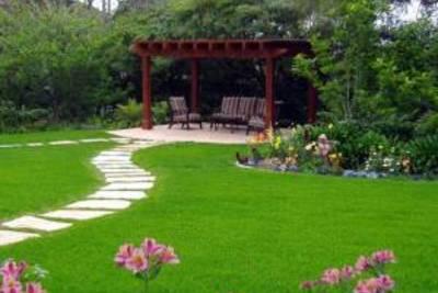 Особенности выращивания газона. Выбор травы для посева.